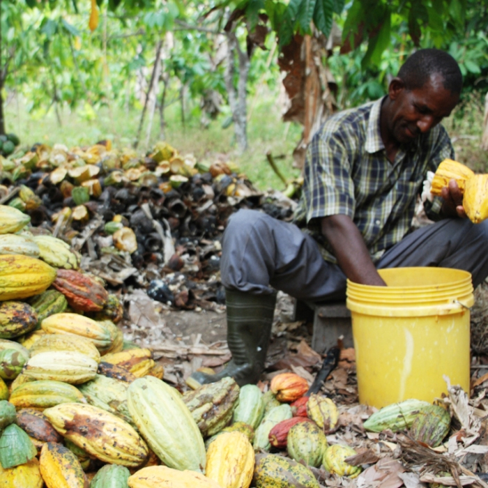 African farmer - Simran Sethi, The Slow Melt cropped